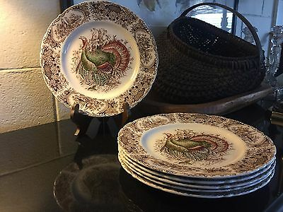 "Set of 6 Johnson Brothers Windsor Ware Wild Turkey 10 3/4"" Dinner Plates England"