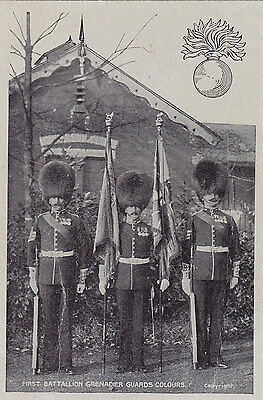 British Army Royal First Battallion Grenadier Guards Colours 1908 G.D.&D.