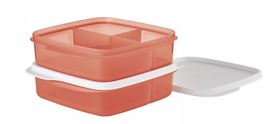 Tupperware Lunch-It Divided Square Snack Set of Two Coral Crush Orange New