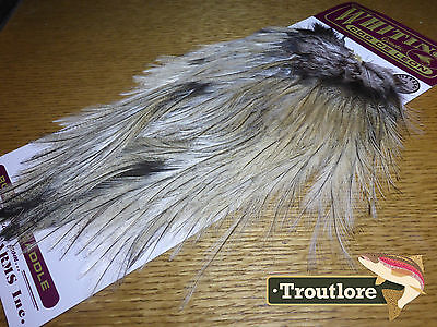 Whiting Farms Coq De Leon Rooster Saddle Cream Badger New Flytying Feathers