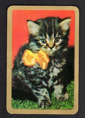 Vintage Swap Card - Lovely Kitten with Yellow Bow (Gold Border)  (BLANK BACK)