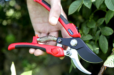 Darlac Compound Action Pruner Plus (DP333)