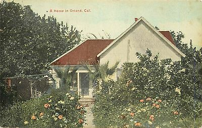 c1910 Postcard; Flower Garden at Home in Orland CA Glenn County Unposted