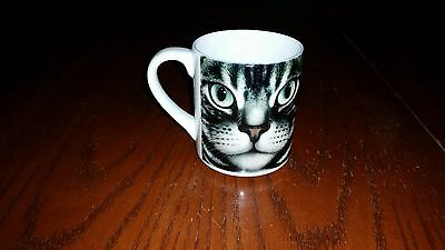 CAT'S MUG ON A COFFEE CUP - AMERICAN SHORT HAIR - CAT KITTEN KITTY Braldt Braids
