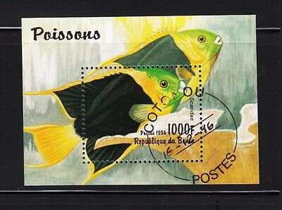Parrot Fish - Scaridae - small Souvenir Sheet