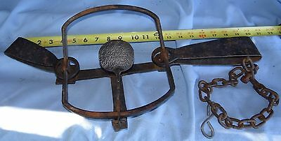 Large Hand Forged Beaver Wolf Double Spring Trap Leg Hold Mountain Man Antique B
