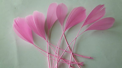 """10 CANDY PINK COQUE FEATHERS APPRROX; 5"""" FOR HAT/FASCINATOR FINISHING/CRAFTS etc"""