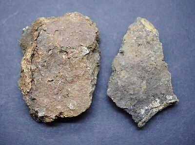 Early British Neolithic Clay Pottery Fragments 4000 Bc