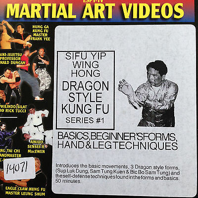 Dragon Style Kung Fu DVD  ( 2 dvds ) basic to intermediate