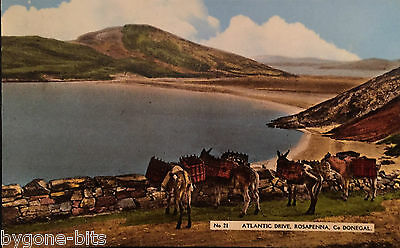 ATLANTIC DRIVE ROSAPENNA CO DONEGAL POSTCARD 1930's IRELAND DICKSON LONDONDERRY