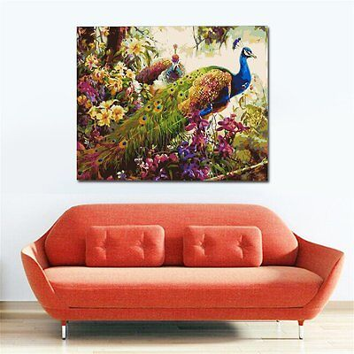 DIY Peacock Oil Painting By Numbers Frameless Canvas Coloring Wall Pictures RS