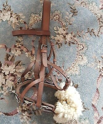 Full size leather lunging caveson, Horse or Shire Horse,
