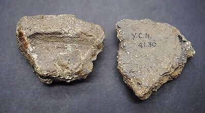 Early British Neolithic Clay Pottery Fragments 4000 Bc.