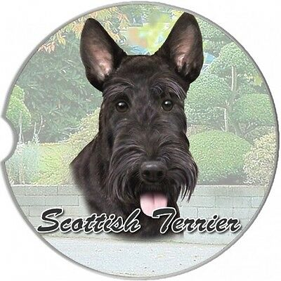 SCHNAUZER UNCROPPED DOG 2CT CAR COASTERS