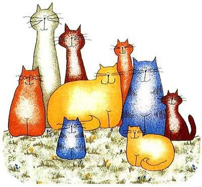COLORFUL CATS, KITTIES, KITTENS  Window Cling Decal Sticker - NEW