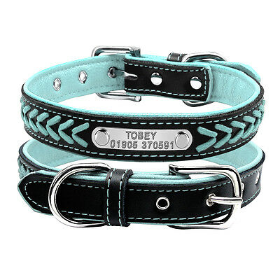 Leather Padded Personalized Dog Collars with Nameplate XS S M L Breeds Blue