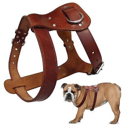 Handcraft Leather Pet Large Dog Harness Vest Durable for Large Dogs Adjustable