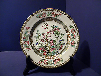 Coal Port England Indian Tree Gold Trimmed Smooth Edge Bone China Dinner Plate