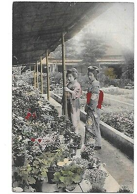 JAPAN Early Ethnic Postcard Japanese Two Gheisha Girls Plants Flowers