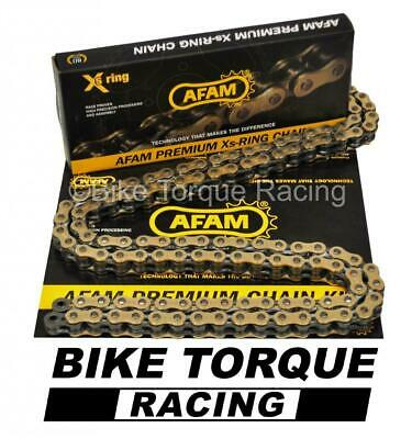 Triumph 1050 Speed Triple 05-10 AFAM Recommended Gold Chain