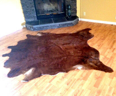 Hair-on Cowhide Rug Area Carpet Leather Upholstery 7x6 VGUC
