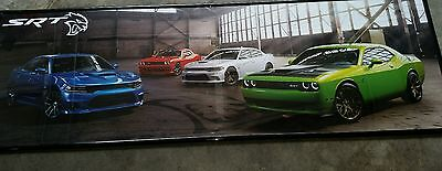 Dodge Challenger Hellcat framed picture art work wallart scat pack Only1 On Ebay