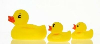 NewBorn, Baby, Vital Baby Play 'n' Splash Family, Ducks, 3 Pack New Born, Kid