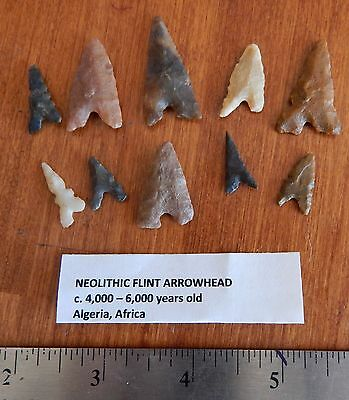 Lot of 10 Neolithic Stone ARROWHEADS Algeria Africa