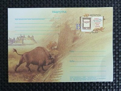 BELARUS ANIMALS BISON WISENT BUFFALO BISONS WISENTE Postcard c5654