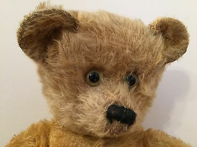 Beamish - Rear Leg Seams (Bing?) Old Antique Mohair Teddy Bear, Clear Glass Eyes