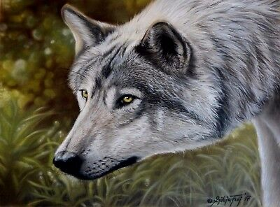 Original Pastell Wolf wildlife natur pastel painting wolf lupo lupin drawing