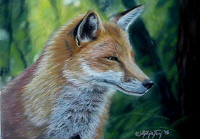 Original Pastell Fuchs original pastel painting fox wildlife zeichnung drawing