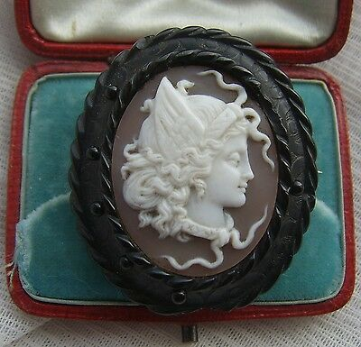 Antique VICTORIAN Carved WHITBY JET Young MEDUSA Shell Cameo Locket Back Brooch