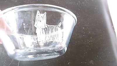 Silky Terrier- Hand engraved Glass Bowl by Ingrid Jonsson