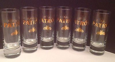 """Lot of 6 PATRON Tequila Gold Bee Liquor Shot Glasses 4"""" Tall, Great Condition"""