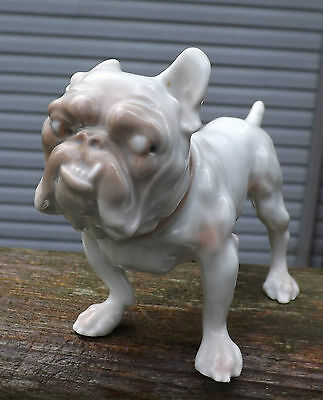 B & G Bing and Grondahl Bulldog  1676 Snaggle tooth DENMARK A+++ DOG FIGURINE