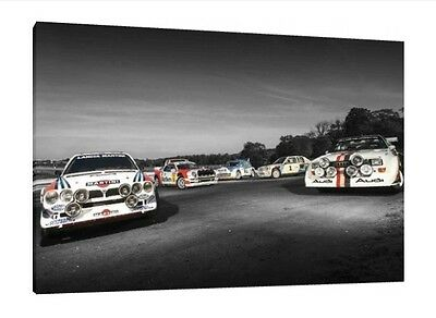 Group B Rally Legends 30x20 Inch Canvas Audi S1 Ford RS200 Lancia 205 T16