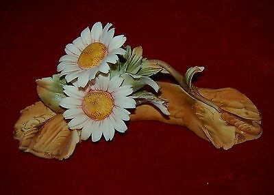 """CAPODIMONTE  """"Dasies"""" Made in Italy Magnificent Porcelain Flowers!"""