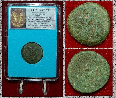 Ancient Coin Of PTOLEMY VI Zeus and Two Eagles Alexandria Mint Bronze