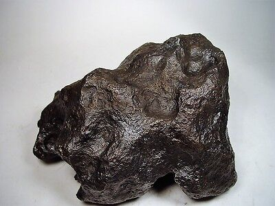 Museum Quality! Lots Of Thumbprints! Best New Campo Del Cielo Meteorite 28.53 Lb