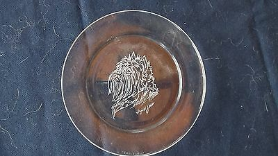 Affenpinscher- Hand Engraved Glass Plate by Ingrid Jonsson