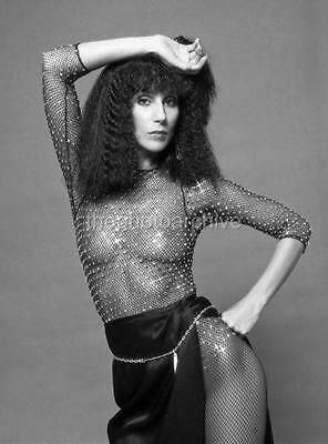 CHER 8x10 to 24x36 Photo Poster Canvas Wall Adhesive by LANGDON HL298