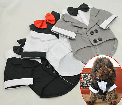 Dog Pet Tuxedo Costume Wedding Suit Black Bow Tie collared shirt Outfit S M L XL