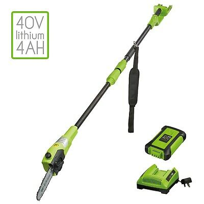 Electric Pole Chainsaw Telescopic Long Reach Tree Pruner Trimmer Branch Cutter