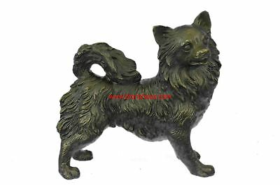 "Pomeranian or Long Haired Chihuahua Bronze Dog Sculpture 7"" x 9"""