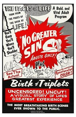 No Greater Sin and The Facts Of Life Retro Double Feature Movie Poster
