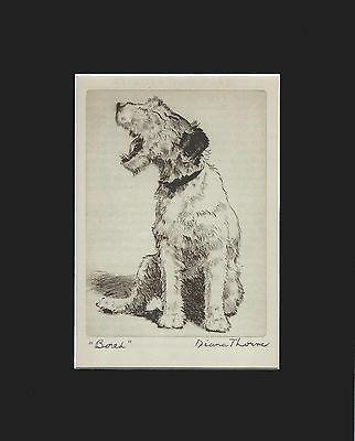 """vINTAGE Fox Terrier Dog Print 1936 by Diana Thorne 8 X 10 Matted - """"Bored"""""""