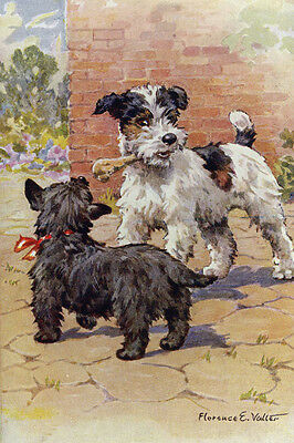 Scottish & Fox Terrier Dog 1940s by Florence Valter LARGE New Blank Note Cards