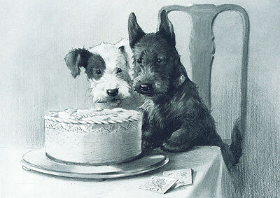 Scottish & Sealyham Terrier Dogs A E Kennedy 1920s  LARGE New Blank Note Cards
