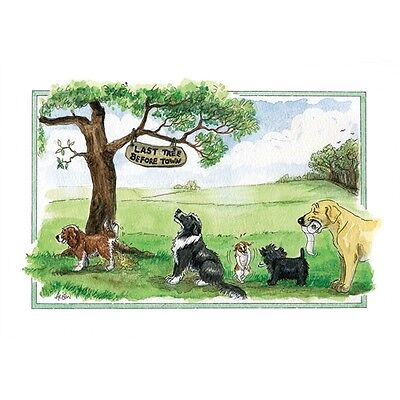 Alison's Animals Funny Humour Dog Lovers Blank Birthday Large Art Greeting Card